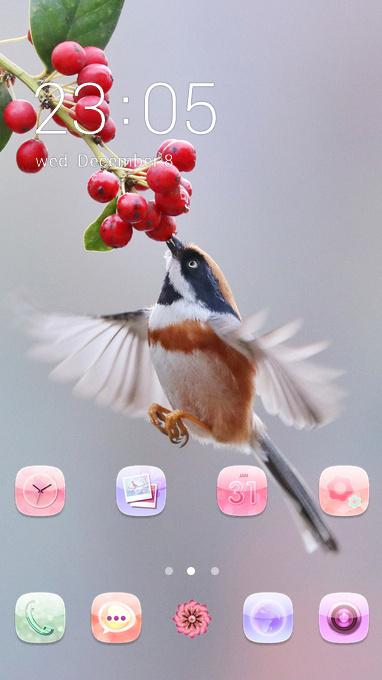 cute bird
