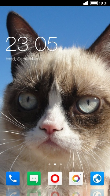 Theme for Xolo Play 8X-1100 Grumpy Cat Wallpaper