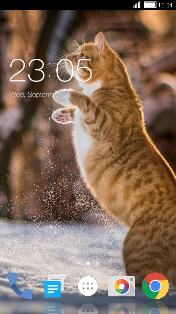 Theme for Spice M-5750 Cat HD Wallpaper