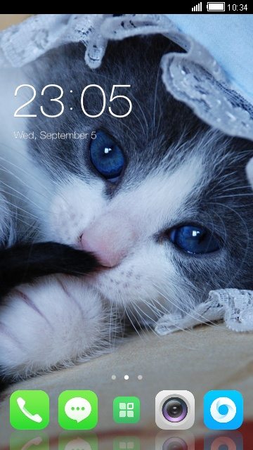 Theme for Lava Discover 128 Cute Cat Wallpaper