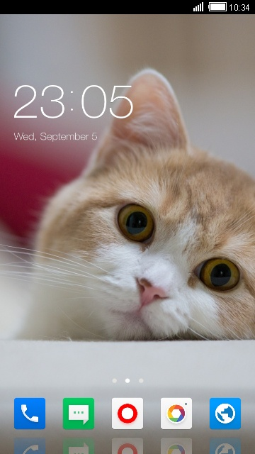 Theme for Xolo Q1200 Cat Wallpaper