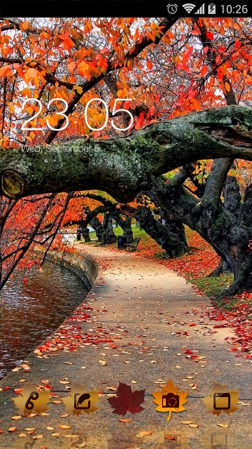 Autumn Red Leaves Theme HD