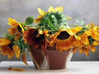 Bouquet-flowers-sunflowers-...